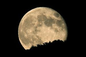 보름달 뜸